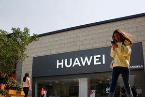 Một loạt nhân viên Mỹ bị Huawei sa thải, đuổi về nước