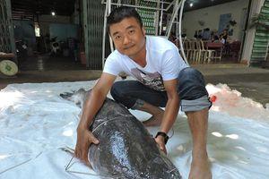 Mục sở thị cá lăng đuôi đỏ nặng gần 80 kg