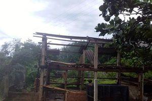 Quảng Ngãi: Tố lốc gây thiệt hại lớn tại xã miền núi