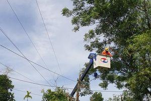 Nỗ lực xử lý việc mất điện thường xuyên tại các huyện miền núi Quảng Nam