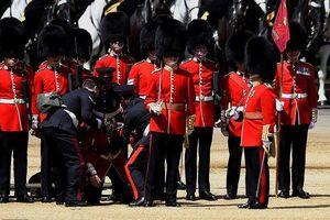 Lính gác hoàng gia Anh ngất xỉu khi diễn tập mừng sinh nhật Nữ hoàng