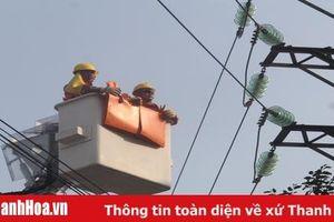 Điện lực Thanh Hóa chủ động các phương án phòng chống thiên tai