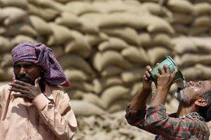 Ấn Độ nắng nóng 'như thiêu như đốt', nhiều người tử vong
