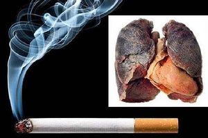 Tỷ lệ hút thuốc lá giảm đáng kể