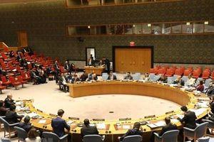 Các nước trông đợi Việt Nam đóng góp tích cực cho Hội đồng Bảo an