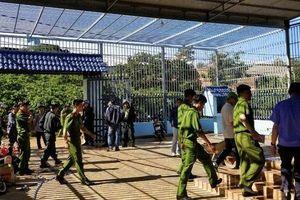 Bắt kẻ cầm đầu vụ hạ độc hơn 10 ha rừng thông ở Lâm Đồng