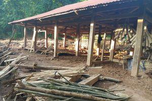 Điện Biên: Mưa lũ khiến 2 người mất tích