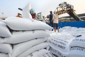 Trị giá xuất khẩu gạo của Việt Nam giảm mạnh trong 5 tháng