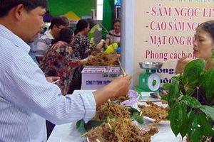 Bán 60kg sâm củ Ngọc Linh, người dân 'bỏ túi' gần 4,2 tỷ đồng