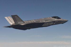 Nhật Bản nối lại hoạt động của tiêm kích tàng hình F-35