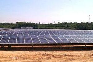 Quảng Ngãi có thêm nhà máy điện mặt trời công suất lớn