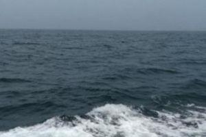 Lễ tình nhân TQ, cô gái được bạn trai tặng cả một vùng biển 210 hécta