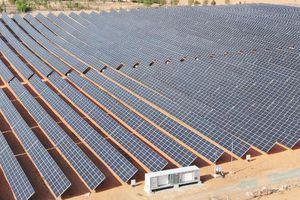 Dự án điện mặt trời Hồng Phong 4 hơn 1.200 tỷ đồng chính thức hòa lưới điện quốc gia