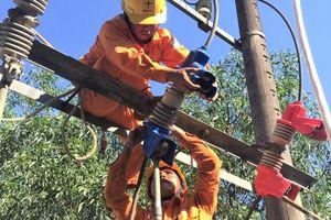 PC Thừa Thiên Huế tăng cường công tác ngăn ngừa sự cố lưới điện