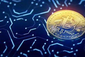 Giá Bitcoin giảm mạnh nhất 2 tuần, tuột mốc 8.000 USD