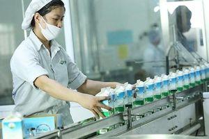 Chi hơn 1.700 tỉ, Vinamilk vẫn chưa thâu tóm được sữa Mộc Châu
