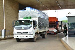 Xuất hơn 11 nghìn tấn vải lai sang Trung Quốc qua cửa khẩu Lào Cai