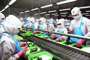 Vì sao doanh nghiệp tư nhân Việt Nam lại hay 'chết yểu'?