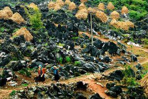 Công viên địa chất toàn cầu Cao nguyên đá Đồng Văn sẽ đạt mốc 1 triệu du khách vào năm 2030