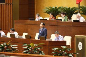 Khách du lịch Trung Quốc đến Việt Nam giảm 'vì nhiều lý do'