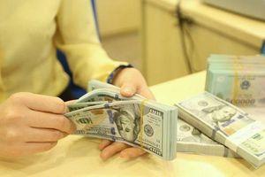 Tiền đồng ổn định giá trị