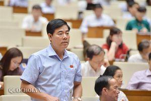 Đbqh Nguyễn Quang dũng: tán thành việc ưu tiên phân bổ vốn dự phòng cho các dự án liên quan đến trụ sở làm việc của cơ quan tư pháp