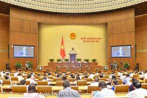 Phó Thủ tướng Trịnh Đình dũng trả lời những chất vấn thuộc trách nhiệm của Chính phủ