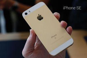 Những thiết bị Apple nào được cập nhật hệ điều hành iOS 13?