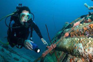 Đáy biển hút hải tặc ở Curacao đẹp thế nào?