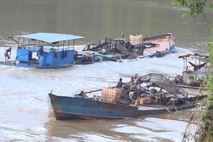 TPHCM chi hơn 160 tỉ đồng 'chiến' với cát tặc