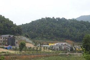 Sai phạm đất rừng Sóc Sơn: Xin dừng cưỡng chế