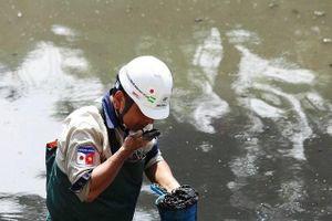 Sông Tô Lịch bớt hôi sau 3 tuần làm sạch bằng công nghệ Nhật Bản
