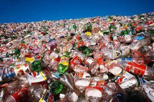 Con người hấp thụ hơn 50.000 hạt vi nhựa mỗi năm