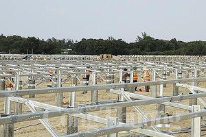 Hà Tĩnh sắp có thêm nhà máy điện mặt trời hòa lưới quốc gia