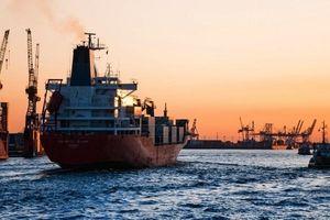 Cải thiện hiệu quả hoạt động của tàu biển bằng công cụ kỹ thuật số