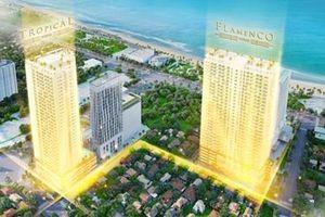 Bất động sản du lịch ở Quy Nhơn - Bình Định 'cất cánh'