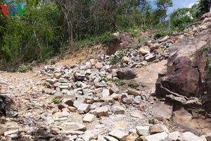 Tái diễn tình trạng lấn chiếm đất rừng trên núi ở Bà Rịa – Vũng Tàu