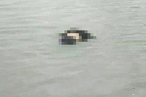 Hai vợ chồng thiệt mạng khi câu mực trên biển