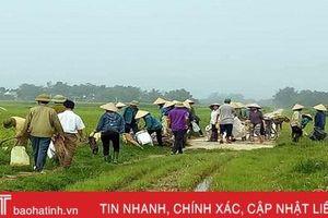 Hàng nghìn nông dân Hà Tĩnh ra quân làm sạch môi trường