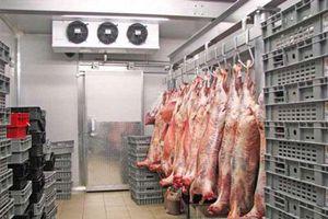 Cấp đông thịt lợn: Doanh nghiệp gặp khó về kho lạnh