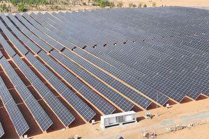 Hà Đô (HDG): Nhà máy Điện mặt trời Hồng Phong 4 hòa lưới điện quốc gia