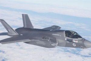 S-400 phát hiện F-35 nhờ được 'chấp điểm lợi thế'?