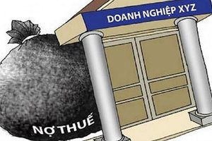 Nhiều doanh nghiệp FDI ở TP HCM nợ thuế nhiều tỷ đồng đã bỏ trốn