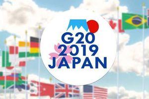 Bộ trưởng Tài chính và Thống đốc Ngân hàng Trung ương G20 bắt đầu nhóm họp tại Nhật Bản