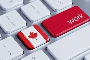 Tỷ lệ thất nghiệp tại Canada giảm xuống mức thấp nhất kể từ năm 1976