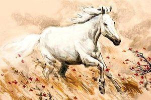 12 con giáp và những ngày sinh đem lại may mắn (P2)