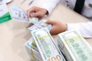 'Nguồn cung USD trong nước bớt dồi dào, khó có thể liên tục mua USD cho dự trữ ngoại hối'