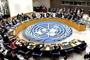 Quốc tế kỳ vọng Việt Nam phát huy vai trò tích cực tại Hội đồng Bảo an