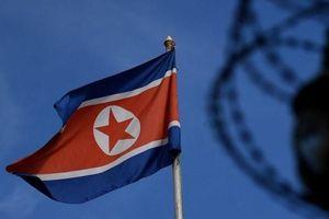 Mạng tuyên truyền Triều Tiên kịch liệt chỉ trích cuộc tập trận của Hàn Quốc