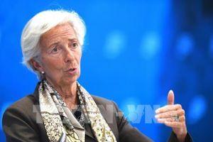 IMF: Loại bỏ thuế quan hiện tại và tránh áp đặt thuế quan mới